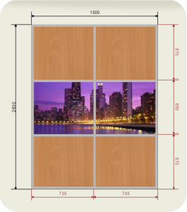 шкаф купе ширина 1500 мм двери фотопечать + ЛДСП (2 двери)